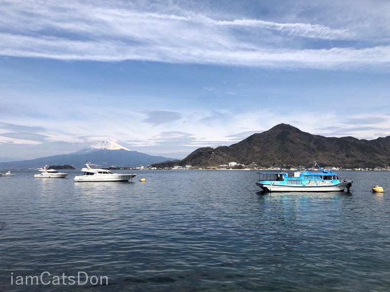 内浦から淡島へ フェリー 富士山