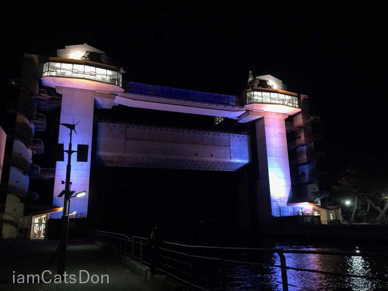 びゅうお 沼津港 夜間 ライトアップ