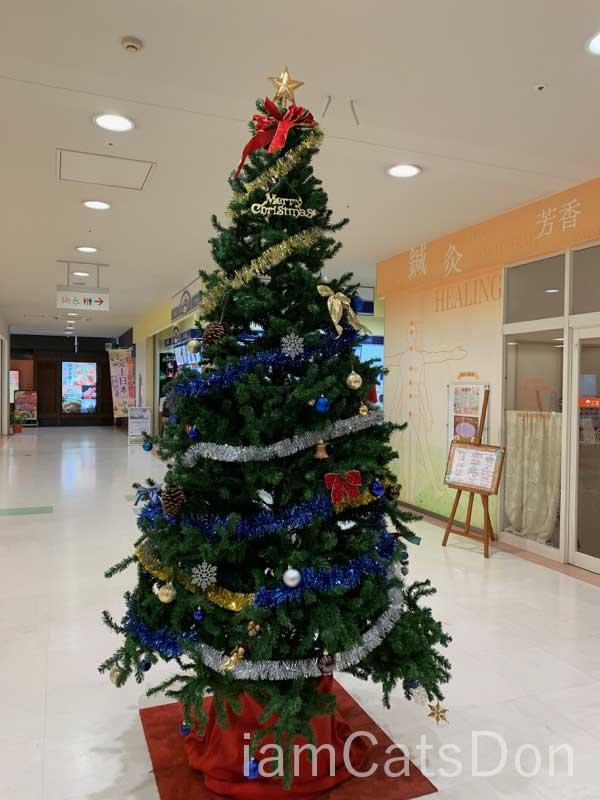 沼津 Bivi クリスマスツリー 2019