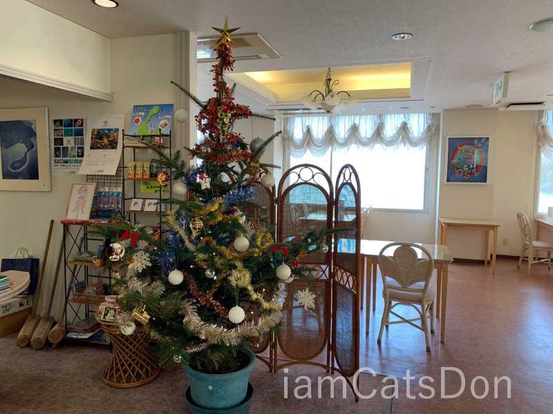 沼津 Seaside Inn 大瀬崎 クリスマスツリー 2019