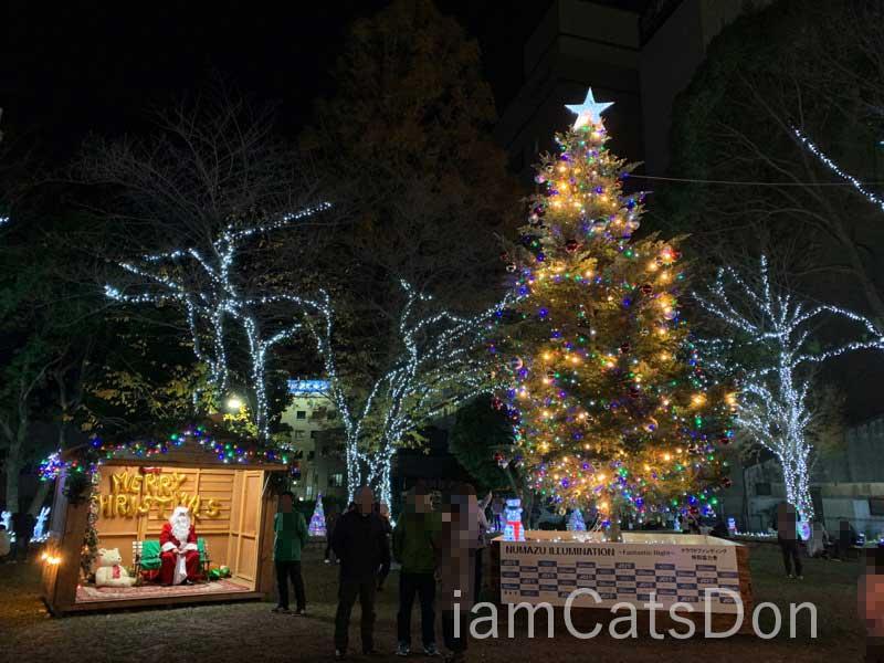 沼津 中央公園 クリスマスマーケット クリスマスツリー 2019