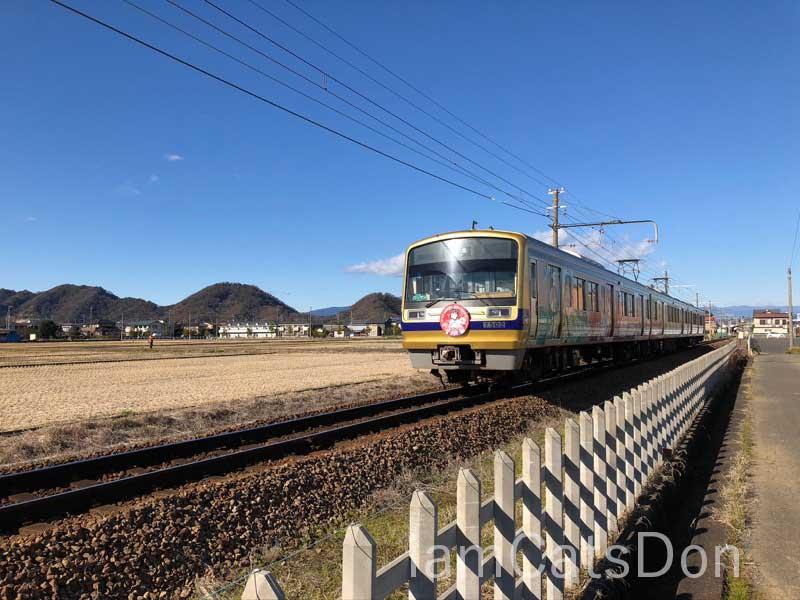 伊豆箱根鉄道 ダイヤちゃんヘッドマーク2 2020年