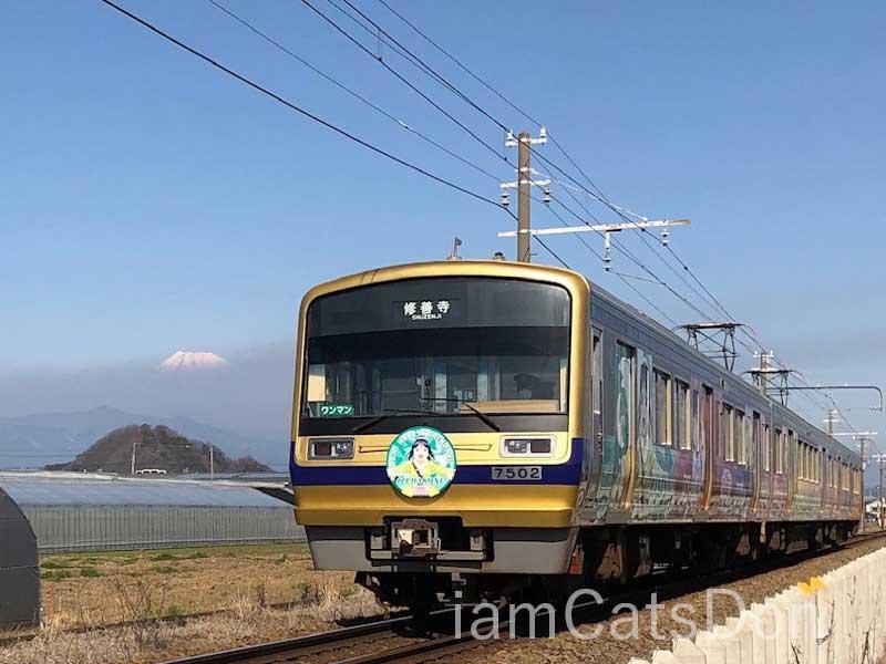 伊豆箱根鉄道 果南ちゃんヘッドマーク 2020年