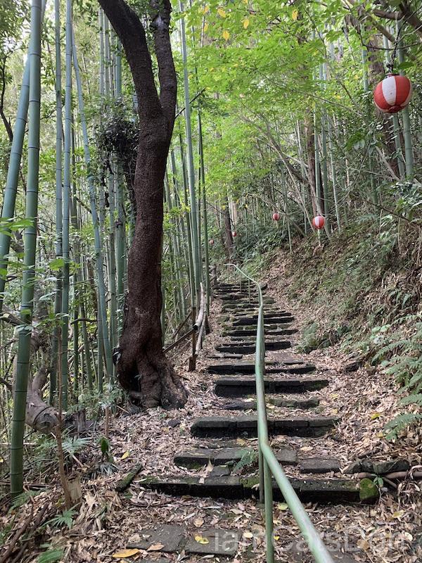 2020年 ヨハネ 2nd 誕生日 あわしまマリンパーク 淡島神社への道1