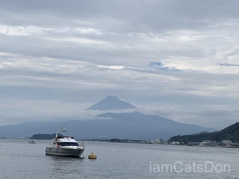 2020年 ヨハネ 2nd 誕生日 あわしまマリンパーク 風景 富士山