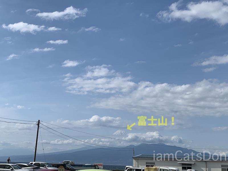 駿陽荘 やま弥 風景 駿河湾 富士山 沼津 西浦